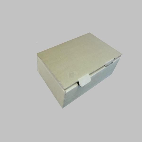 Mailing Carton Box (10pcs/bundle) Size 3