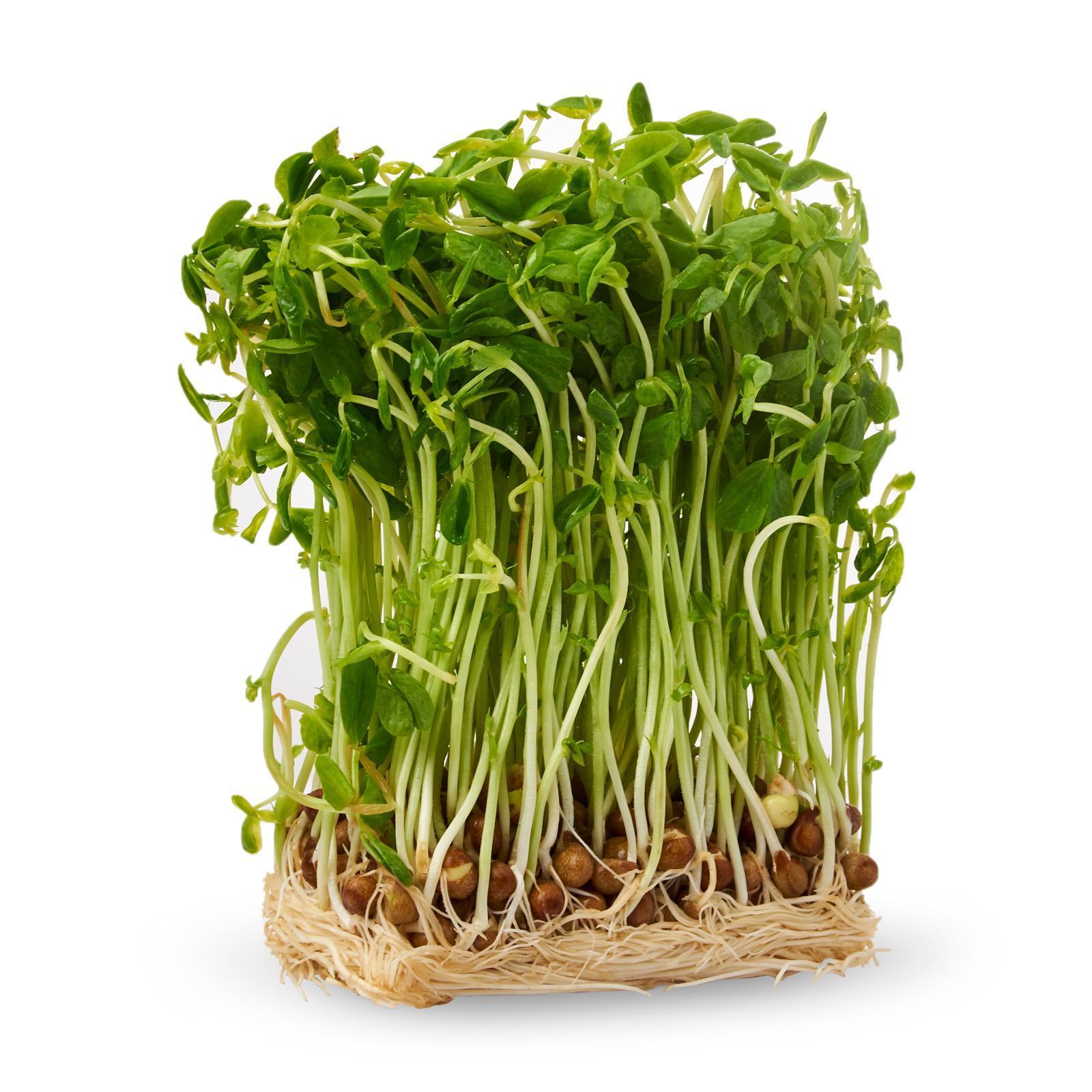 Kirei Japanese Fresh Tou Myou - Dou Miao Pea Sprouts 250 G