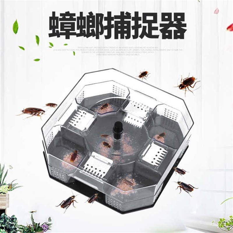 Out Captured in the Cockroaches Catcher Useful Product Nemesis Household Trapping All NEST End Catch Cockroach House Drug Non-toxic Kitchen Box