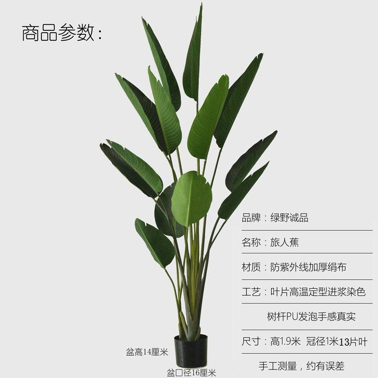 Model Ravenala Potted Plant Decoration Snnei Green Vegetation Fake Bonsaii Landing Plastic Flowers Artificial Flowers Model Living Room Decoration