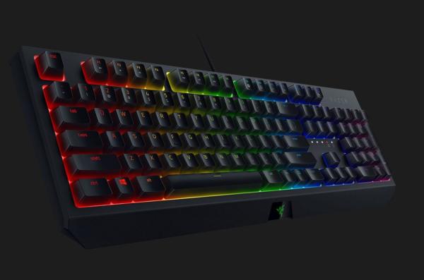 Razer BlackWidow Mechanical Gaming Keyboard: Green Mechanical Switches - Tactile & Clicky - Chroma RGB Lighting - Anti-Ghosting - Programmable Macro Functionality Singapore