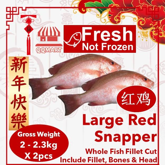 Fresh Whole Large Red Snapper 2 To 2.3kg X 2 Pieces (fillet Cut) By Qqmart.