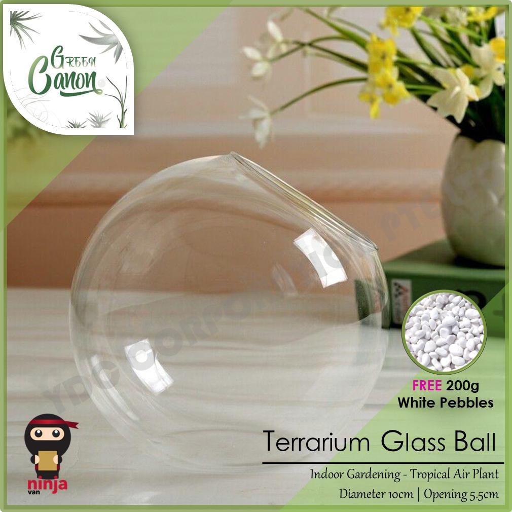 Terrarium Glass Ball 10cm