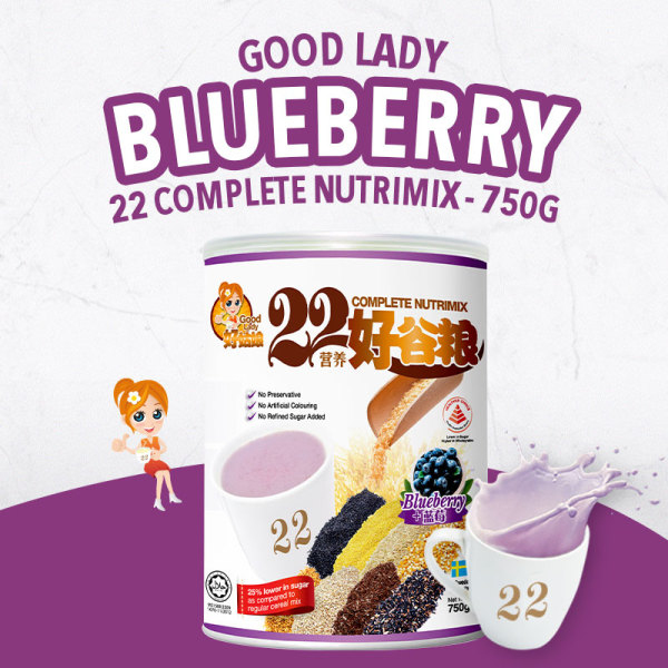Buy 22 Complete Nutrimix (Blueberry) - 750g Singapore