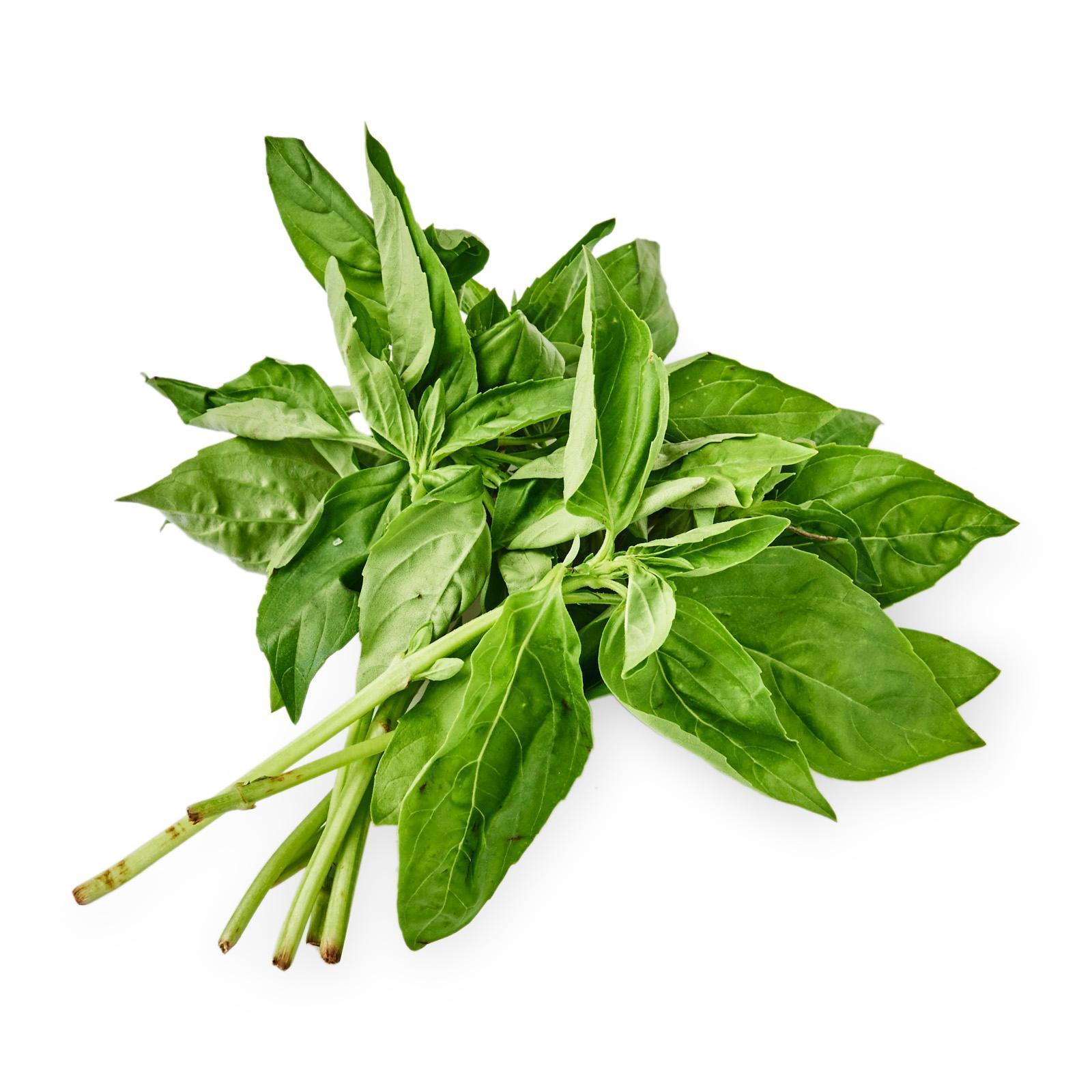 Live Well Sweet Italian Basil Fresh Herbs