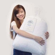 Regular Eps Bean Bag Beans 50 Litres Sg Beans Cheap On Singapore
