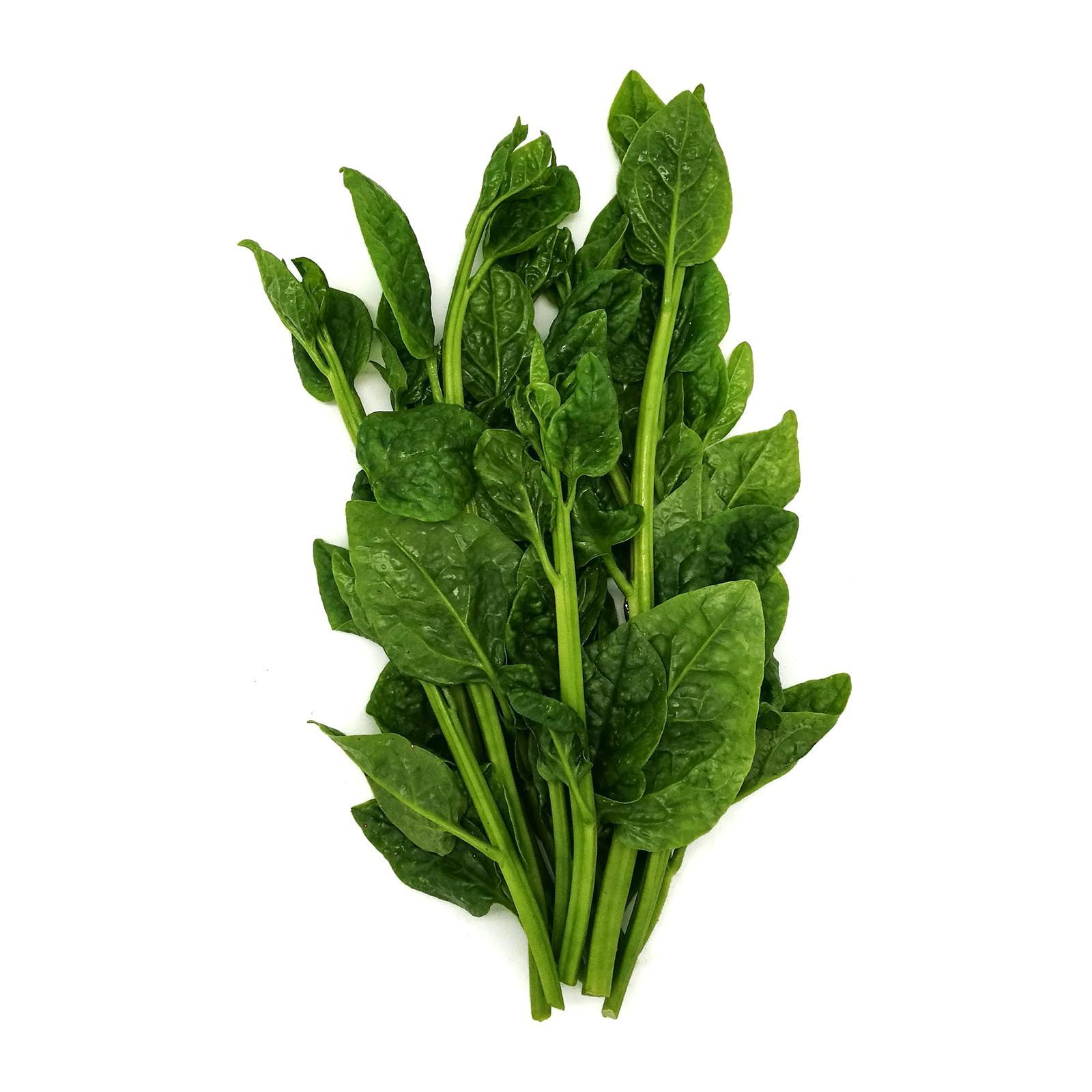 LOVE BIO Organic New Zealand Spinach