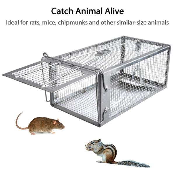 Mouse Rat Trap Cage Live Animal Pest Rodent Mouse Control Bait Catch Singapore