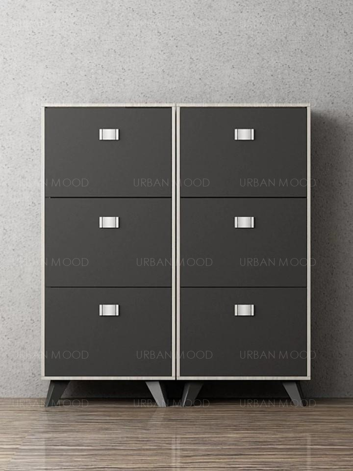 XAVIER Scandinavian Ultra Slim Shoe Cabinet