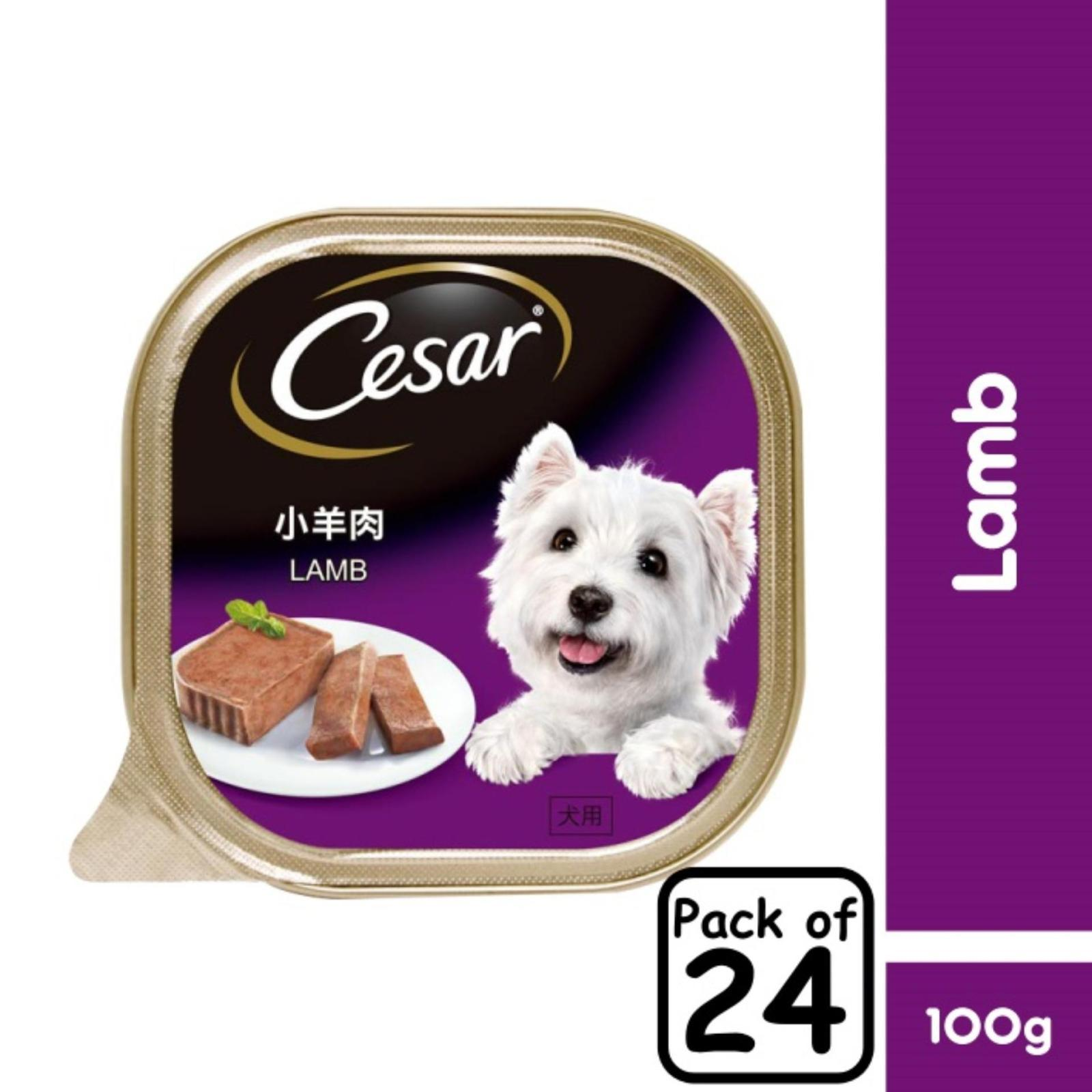 Cesar Lamb Pate Wet Dog Food - Case