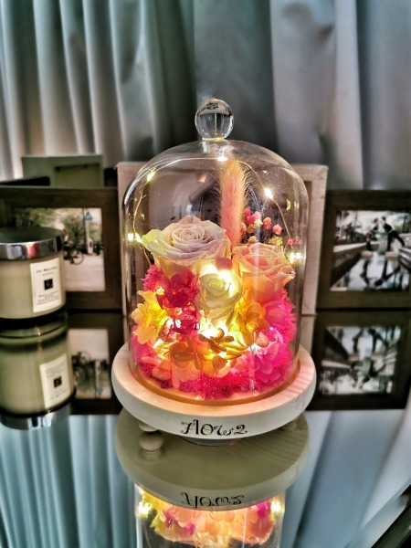 Preserved Dried Flowers | Magical Rose Glass Dome with Lights | Birthday Anniversary Gift