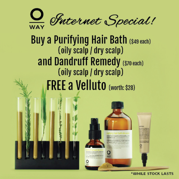 Buy Oway Purifying Exclusive Set (For Oily Scalp) Singapore