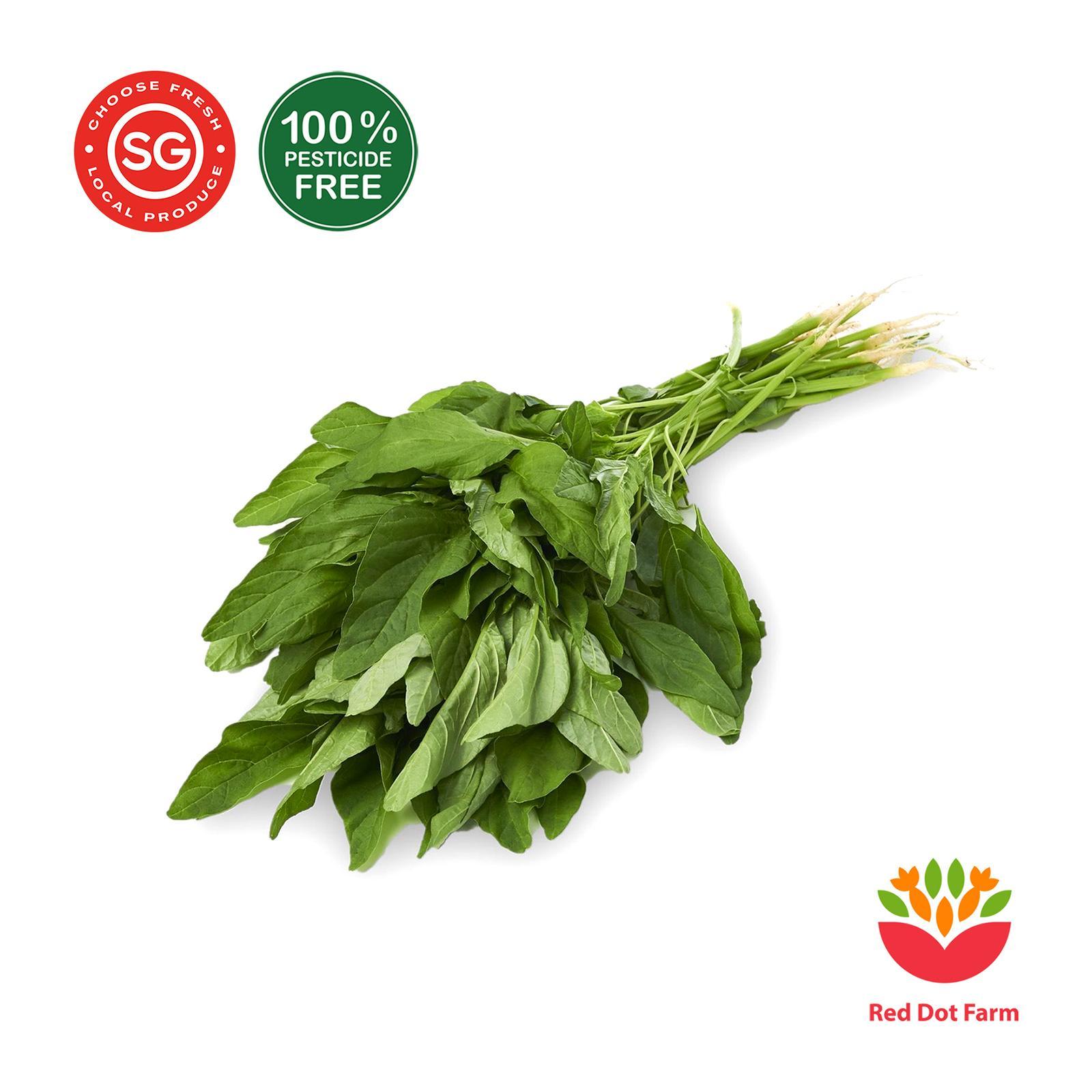 Red Dot Farm Sharp Bayam Spinach