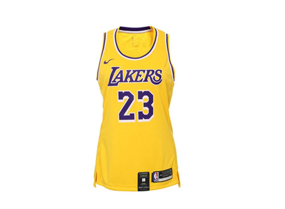 huge selection of d54d8 509d6 Nike LeBron James  23 Icon Edition Swingman AA7125-736 Los Angeles Lakers  Womens NBA