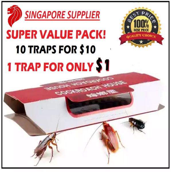Cockroach Trap / Glue Trap with BAIT (10pcs/box) Non-toxic