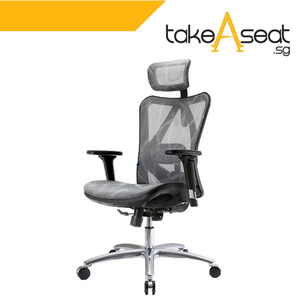 [Pre-Order] M19 Office Chair (Self Setup) ★ Executive Office Chair ★ Mesh Chair ★ Adjustable Lumbar Support ★ Home/Office Use (Ships After 17 August) Singapore