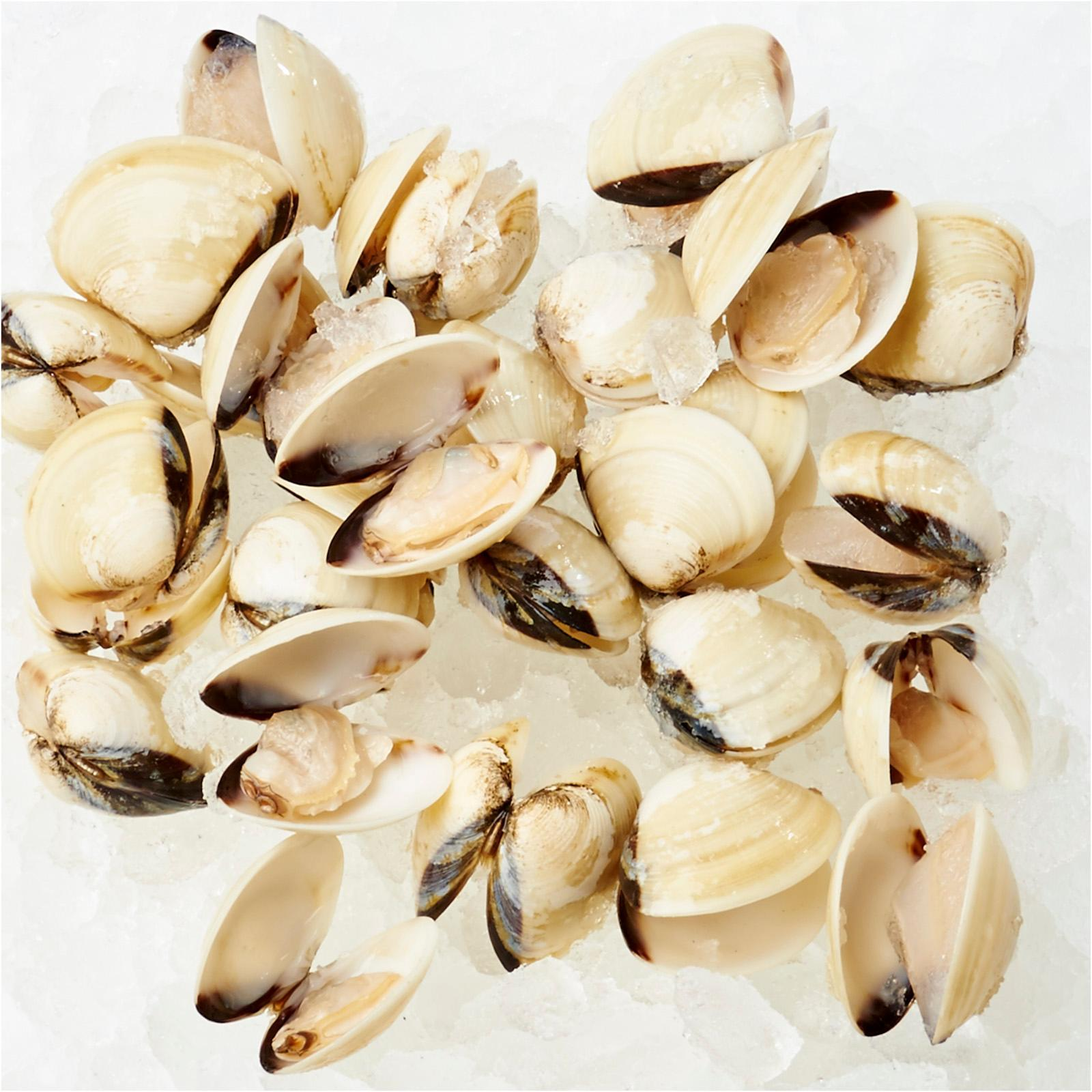 Pan Royal White Clams - Frozen