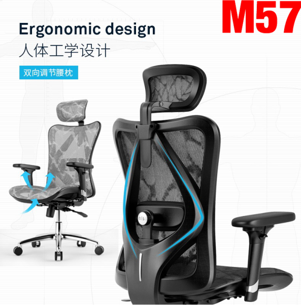 (Guaranteed 5-Day Delivery/3 Years Warranty/Free Installation) UMD Premium Full Mesh Ergonomic Executive Chair with 3D Lumbar Support & Headrest M57