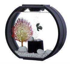 Best Rated Deco O Fish Tank 10 Litre Black