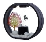 Deco O Fish Tank 20 Litre Black Deal