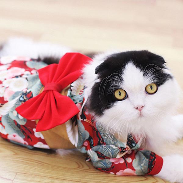 1 Chiếc Trang Phục Cho Thú Cưng Áo Kimono Vải Trang Trí Thắt Nơ Kiểu Nhật Bản Hai Chân Cho Chó Mèo Tiệc Tùng