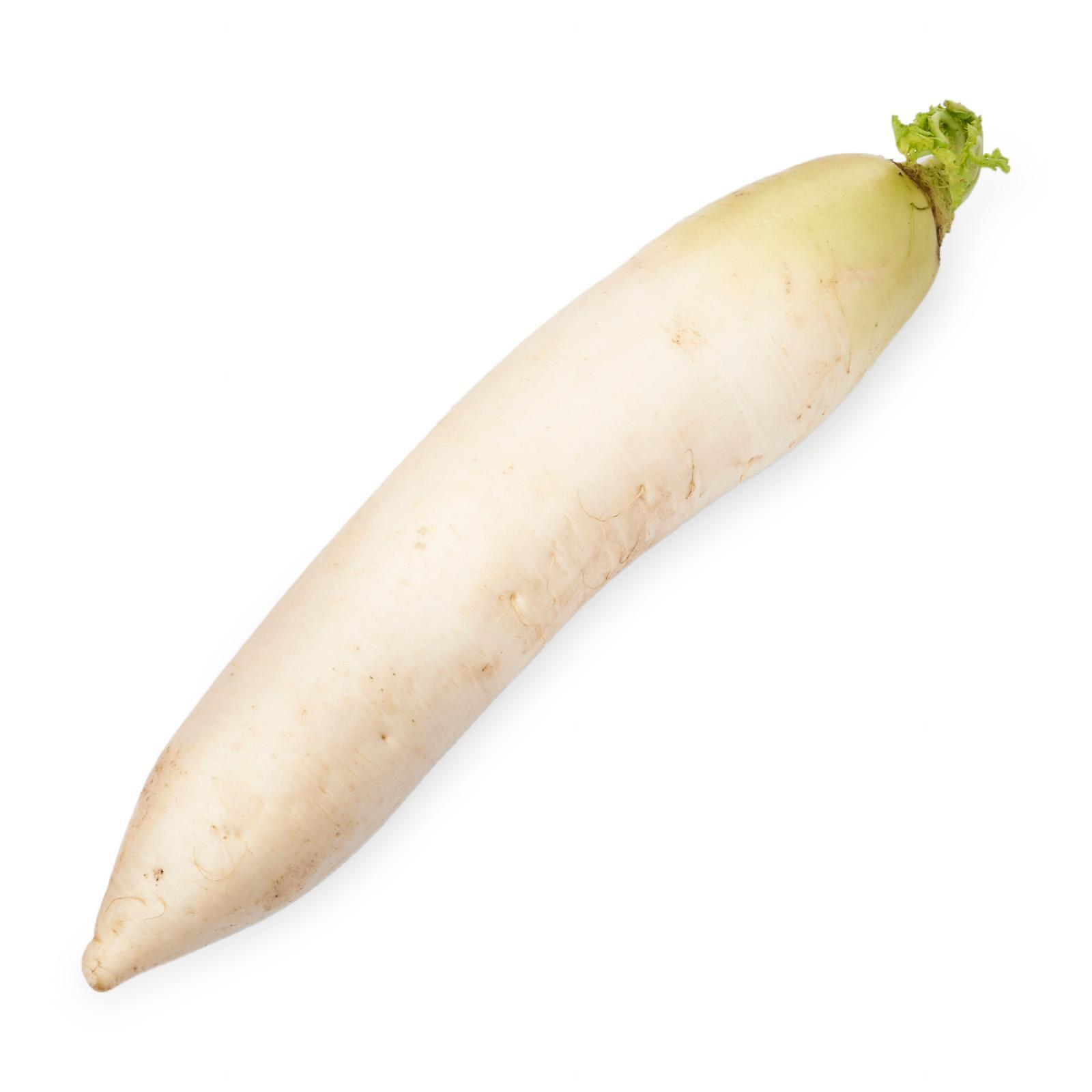 Kirei Fresh And Delicious Japanese Daikon White Radish (Air flown direct from Japan) 1 PCS Pack