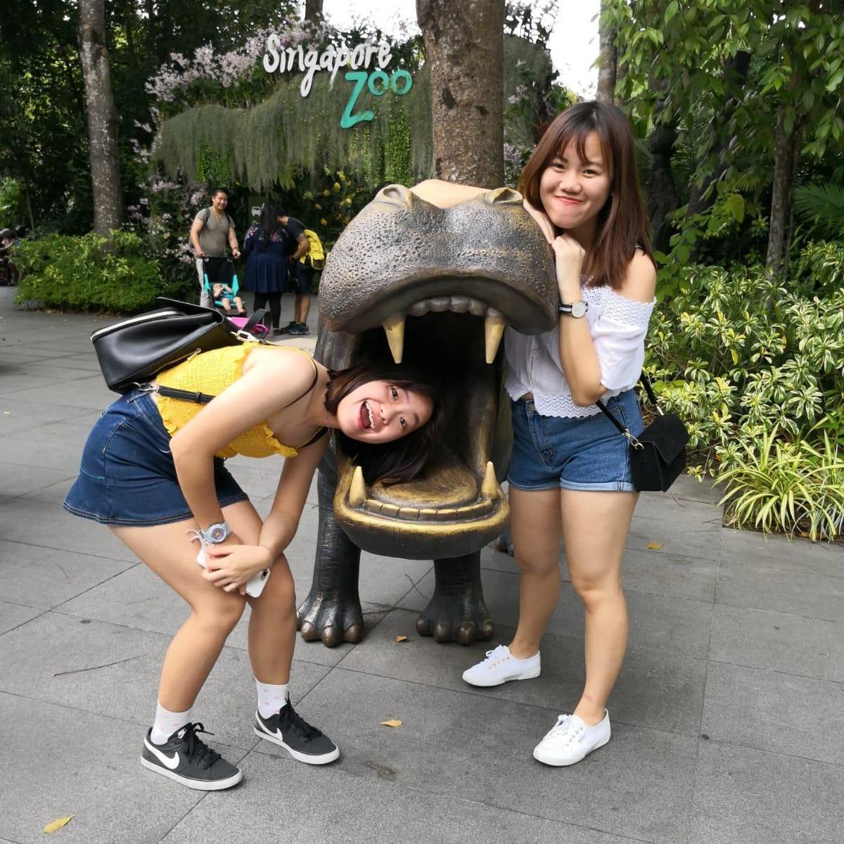 Singapore Zoo (Zoo) (Adult)【$28.0】