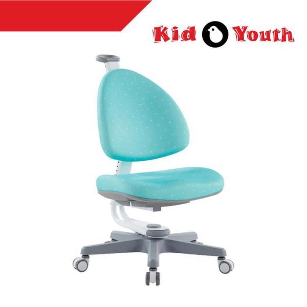 BABO Kid2Youth Kids Ergonomic Study Chair (Self Setup) ★ Study Chair For Kids ★ Back Protection ★ Comfortable Support ★ #1 Taiwan Kids Ergonomic Brand ★ Warranty Provided