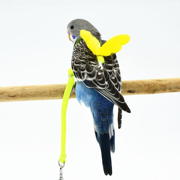 HNDFG Có Thể Điều Chỉnh Chống Cắn Dây Bay Cockatiel Lovebird Đào Tạo Ngoài Trời Dây Kéo Đối Với Vẹt Hoa Mẫu Đơn Budgerigar Pet Chim Khai Thác Dây Xích