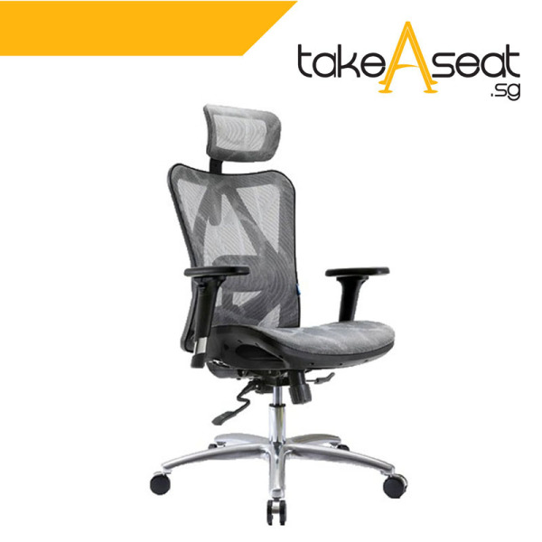M19 Office Chair (Self Setup) ★ Executive Office Chair ★ Mesh Chair ★ Adjustable Lumbar Support ★ Home/Office Use Singapore