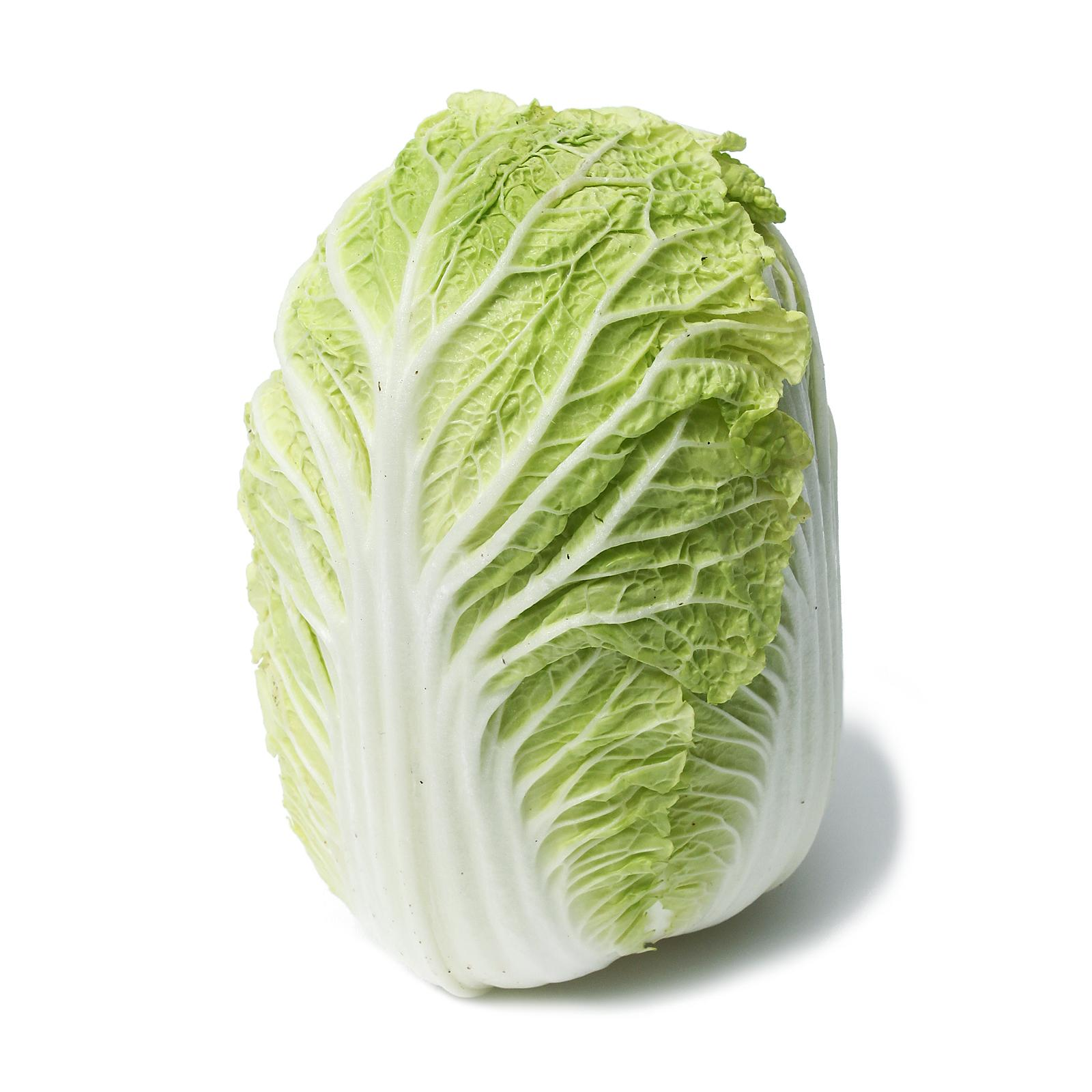 Givvo Chinese Cabbage Wong Bok By Redmart.
