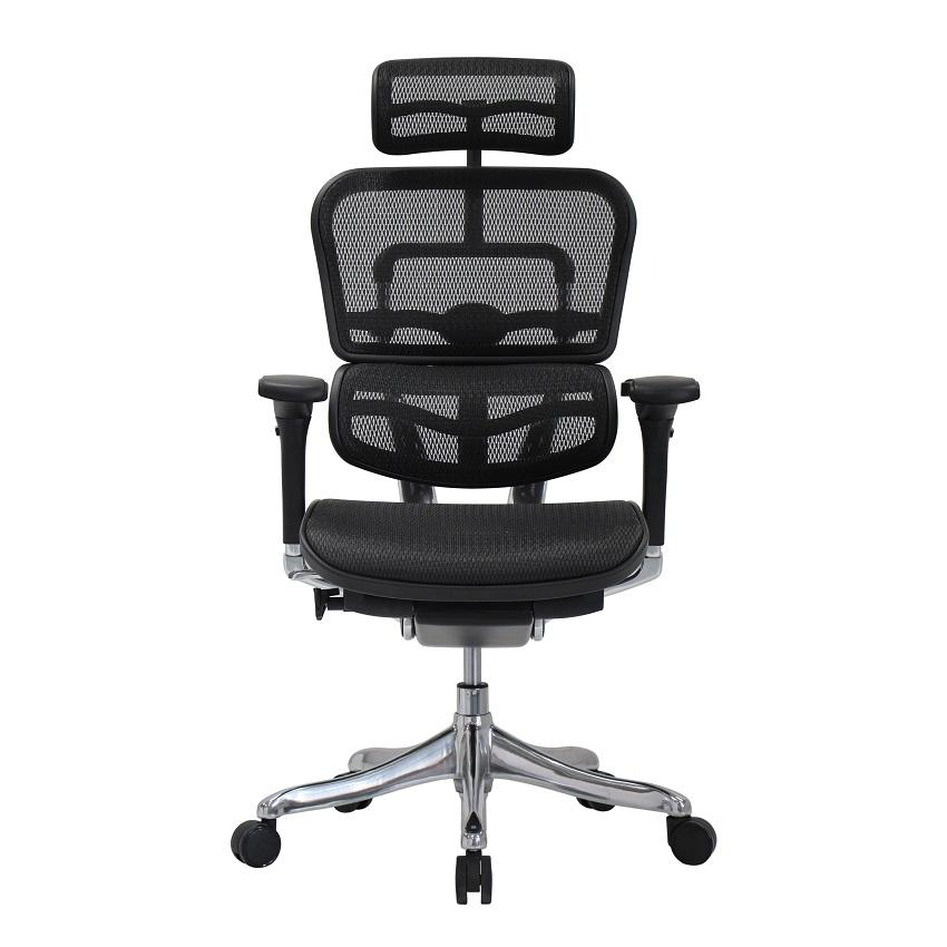 (5 Years Warranty) Ergohuman Plus Elite Chair / Office Chair / Comfortable / Gaming Chair - Free installation