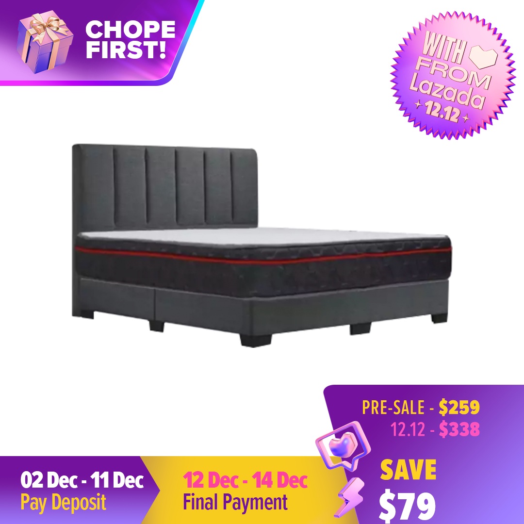 [Furniture Ambassador] Adams Bed Frame + 10  Spring Eurotop Mattress Bed Set