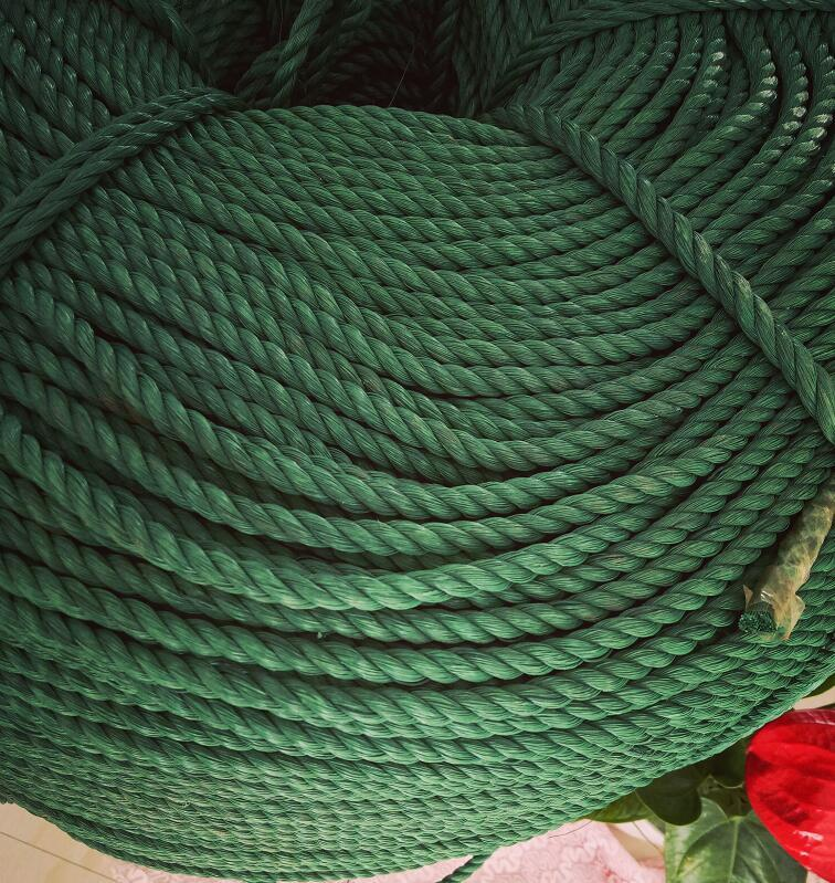 Green Nylon Rope Binding Rope Clothes Was Airing a Quilt on the Home Moving Lanyard Truck Advertisement Lanyard Sub-Greenhouse Film