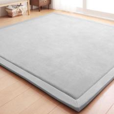 Japanese Premium Living Room Carpet Mats Gray 190*190cm