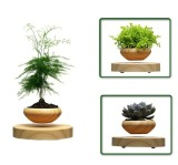 Discount Levitation Air Bonsai No Plant Self Balance Magnetic Suspension Flower Pot Pottedplant Levitate Tubs