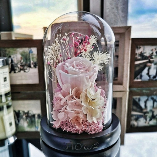 Preserved Dried Flowers | Everlasting Rose Glass Dome with Lights | Birthday Anniversary Gift