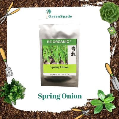 Spring Onion Vegetable Seeds
