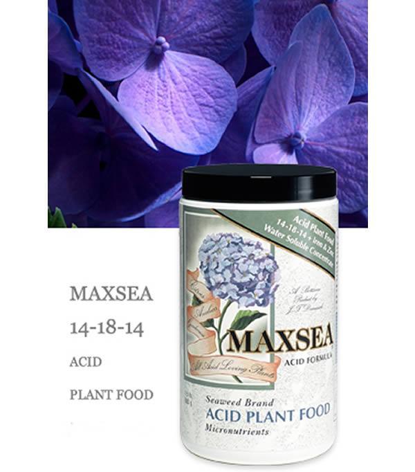 MAXSEA Acid Plant Food 14-18-14 + Iron & Zinc