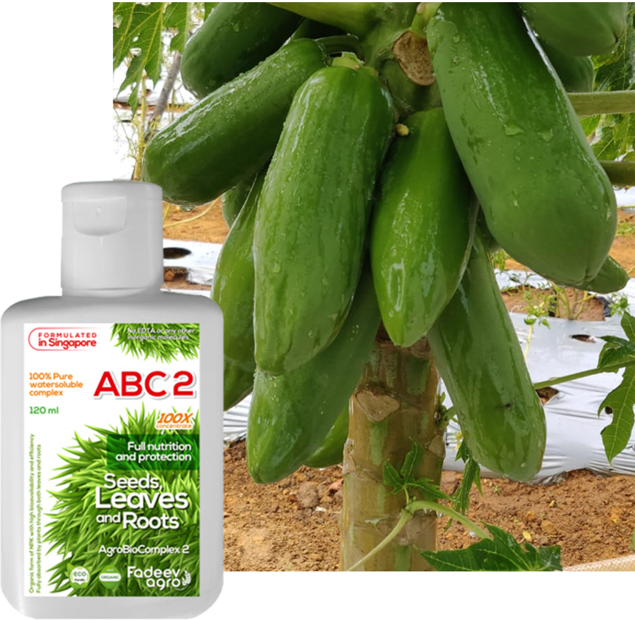 Organic fertilizer AgroBioComplex 1+2. Green growth for strong healthy plant. 100X concentrate.