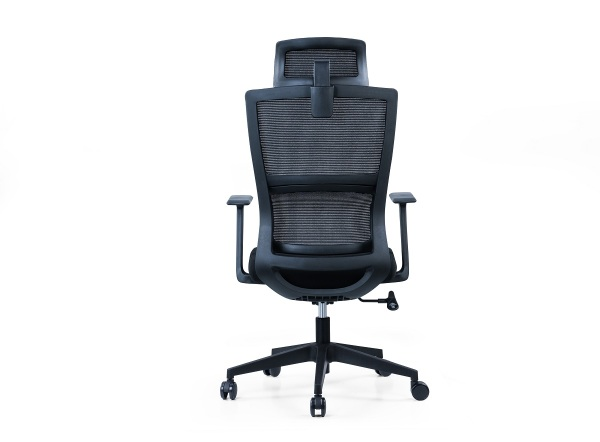 Intelligent Lumbar Support Ergonomic High Back Home Office Computer chair- 233ALP series - Free Installation and Delivery Singapore