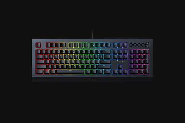 Razer Cynosa V2 Mechanical Gaming Keyboard (2 Years) Singapore