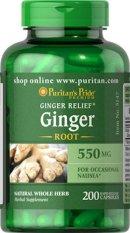 Low Cost Puritan S Pride Ginger Root 550 Mg 200 Capsules Item 005147