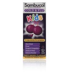 Sambucol Cold & Flu Kids 120ml By Glovida.com.