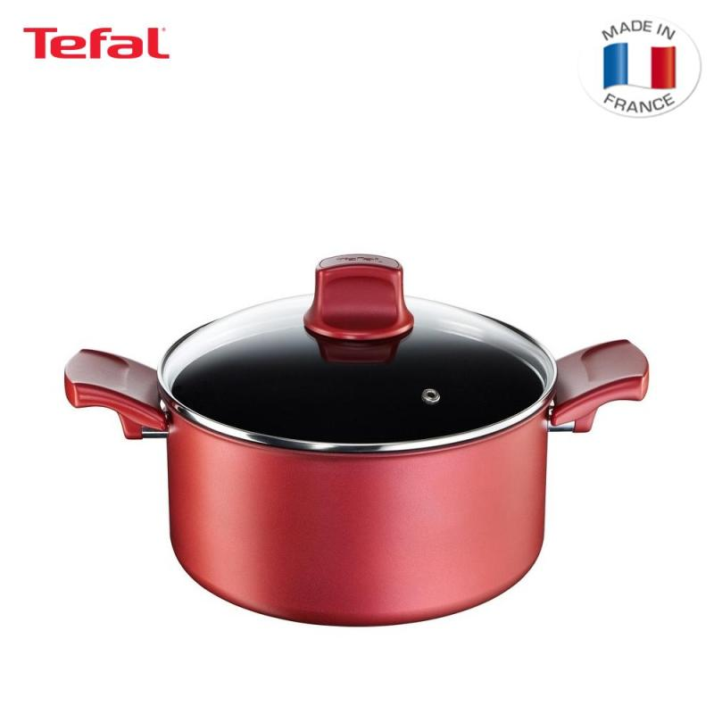 Tefal Character Stew Pot w/Lid 24cm C68246 Singapore