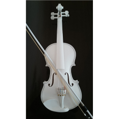 Violin 4 4 Maple Spruce With Case Bow Rosin Whole White Color Intl Cheap