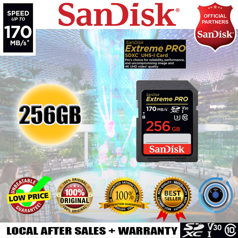 SanDisk Extreme PRO 256GB